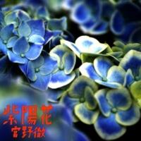 宮野徹 紫陽花