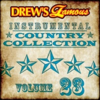 The Hit Crew Drew's Famous Instrumental Country Collection [Vol. 23]