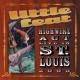 リトル・フィート Highwire Act Live In St. Louis 2003