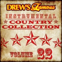 The Hit Crew Drew's Famous Instrumental Country Collection [Vol. 22]