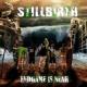 Stillbirth Intro