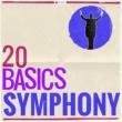 Houston Symphony Orchestra, Leopold Stokowski Symphony No. 3 in F Major, Op. 90: III. Poco allegretto