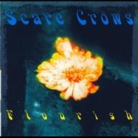 Scare Crows Flourish