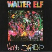 Walter Elf Homo Sapiens