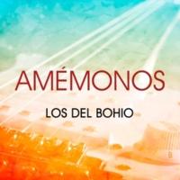 Los del Bohio Amémonos
