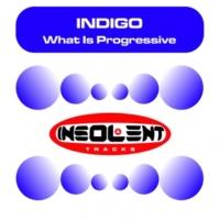 Indigo What Is Progressive