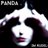 Panda Im Rudel