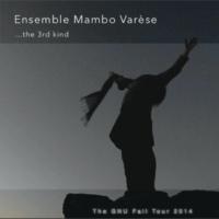 Norbert R. Stammberger Ensemble Mambo Varèse