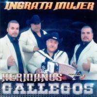 Hermanos Gallegos Ingrata Mujer