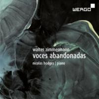 Nicolas Hodges Zimmermann: Voces Abandonadas