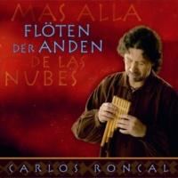 Carlos Roncal Flöten Der Anden