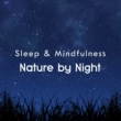 Sleepy Times/Night Sounds/Natural Sound Makers Nature by Night (Sleep & Mindfulness)