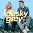 Dusky Grey Joy Ride (The Wild Remix)