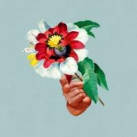 Maribou State Feel Good (feat. Khruangbin)