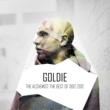 Bjork Isobel (Isobel's Lonley Heart) [Goldie Remix]