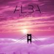 ALBA Мосты
