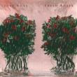 Juke Ross Fresh Roses