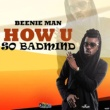 Beenie Man How U So Badmind