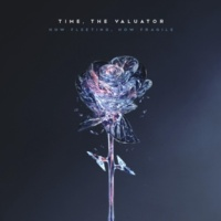 Time, the Valuator The Violent Sound