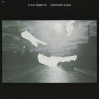 Steve Tibbetts Northern Song