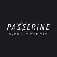 Passerine Numb