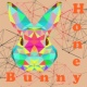 Honey Bunny Take Off