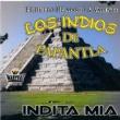 Los Indios de Papantla Indita Mia