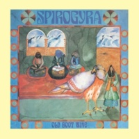 Spirogyra Don't Let It Get You