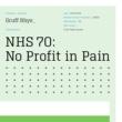 Gruff Rhys No Profit in Pain