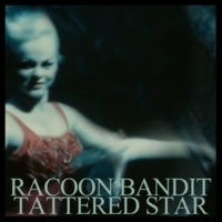 Racoon Bandit Tattered Star