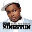 Sean Kingston Take You There (Afroganic Remix)