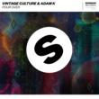Vintage Culture & Adam K