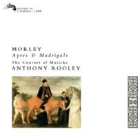 コンソート・オブ・ミュージック/アントニー・ルーリー Morley: Madrigals - Besides A Fountain