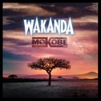 Mokobé Wakanda