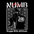 NUMB N.W.A. ~Ninjas With Attitude~