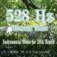 JUN TAKAHASHI 528Hz DNAを修復する作業用BGM