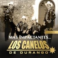 Los Canelos de Durango Guadalupe Munguia