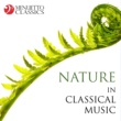 "Stuttgart Chamber Orchestra & Martin Sieghart & Rainer Kussmaul Violin Concerto in E Major, RV 269, ""Spring"" from ""The Four Seasons"": I. Allegro"