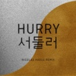 Baba Shrimps Hurry Hurry (Nicolas Haelg Remix)