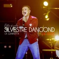 Silvestre Dangond La Llamadita (En Vivo)
