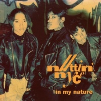 Nuttin' Nyce In My Nature (Blues E Soul Remixx Instrumental)