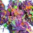 Jenna Jollies Fruitybud Xj13
