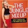 SPICY CHOCOLATE & THE MONSTER CREW/APOLLO/ACE 平成フルスイング feat. APOLLO & ACE