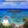 和田弘(スチール・ギター) 癒しのHAWAIIAN BOX 1   スチール・ギターのレジェンド / 和田弘