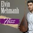 Elvin Mehmanlı Hiss