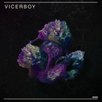 Vicerboy La Doctrina del Shock
