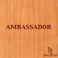 Elliott BROOD President 35