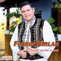 Florin Pârlan E un dor din dragoste