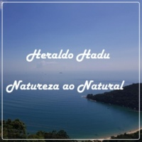 Heraldo Hadu Overdose