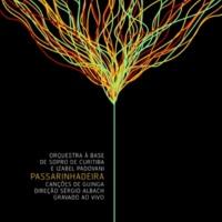 Izabel Padovani&Orquestra à Base de Sopro de Curitiba (oabs) Passarinhadeira - Ao Vivo